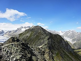 Eggishorn, Berner Alpen, Wallis, Switzerland, from southwest.jpg