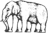 A variant of Shepard's elephant illusion