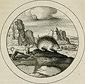 Emblemata selectiora - typis elegantissimis expressa, nec non sententiis, carminibus, historiis ac proverbiis, ex scriptoribus cum sacris tum profanis, antiquis and recentioribus, illustrata (1704) (14562054550).jpg