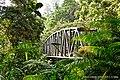 Enchanted Bridge.jpg