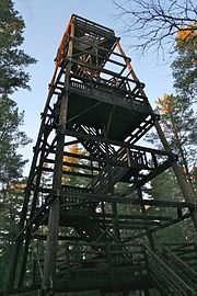 The observation tower in the park