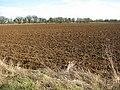 Field by Great Larkhill Farm - geograph.org.uk - 1747440.jpg