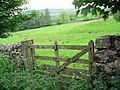 Field gate - geograph.org.uk - 484830.jpg