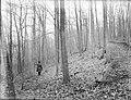 File--C5235-CC5244- Mine Brook, NJ (edd46a84-d5f1-4e77-b7fa-1564edf7362c).jpg