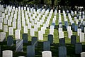 First Day of Summer 2017 at Arlington National Cemetery (35340350141).jpg
