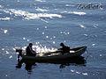 Fishermen 2469.jpg