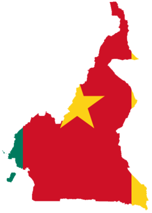 Flag-map of Cameroon