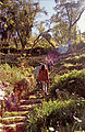 Flickr - archer10 (Dennis) - Bolivia-121.jpg