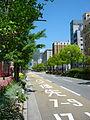 Flower road02s1920.jpg