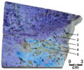 Fluorcarletonite-containing charoitite.png