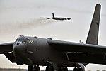 Fly away (8903617983).jpg