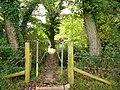 Footbridge, St Neot, Cornwall - geograph.org.uk - 957087.jpg