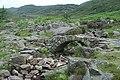 Footbridge at Bwlch Tyddiad - geograph.org.uk - 1439473.jpg