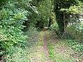 Footpath, Knook - geograph.org.uk - 1479152.jpg