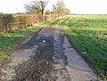 Footpath, near Morton - geograph.org.uk - 643084.jpg
