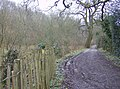 Footpath to Ashford Chace - geograph.org.uk - 357348.jpg
