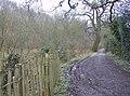 Footpath to Ashford Chace - geograph.org.uk - 357348.jpg