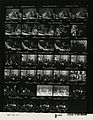 Ford B1223 NLGRF photo contact sheet (1976-08-18)(Gerald Ford Library).jpg