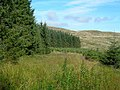 Forest and Hills - geograph.org.uk - 534008.jpg