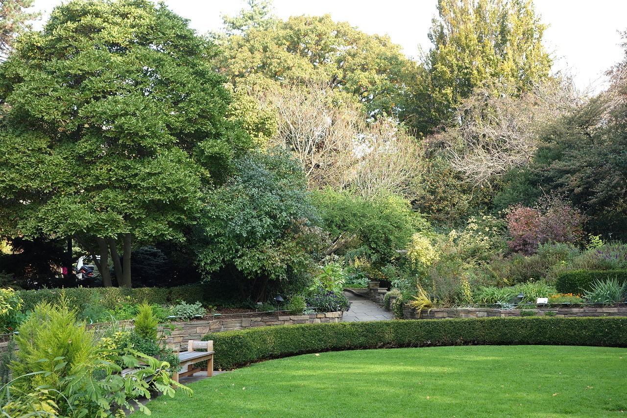 File Fragrance Garden Brooklyn Botanic Garden Brooklyn Ny Dsc07933 Jpg Wikimedia Commons