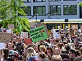 FridaysForFuture protest Berlin 31-05-2019 02.jpg
