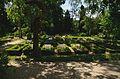 Friedhof der Diakonie Neuendettelsau 0212.jpg