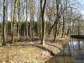 Friedrichsmoor Graben 2008-02-15 039.jpg