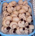 Frutta martorana funghi champignon 0091.jpg