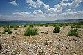 Galilee - Israël (3-2) (4675252828).jpg