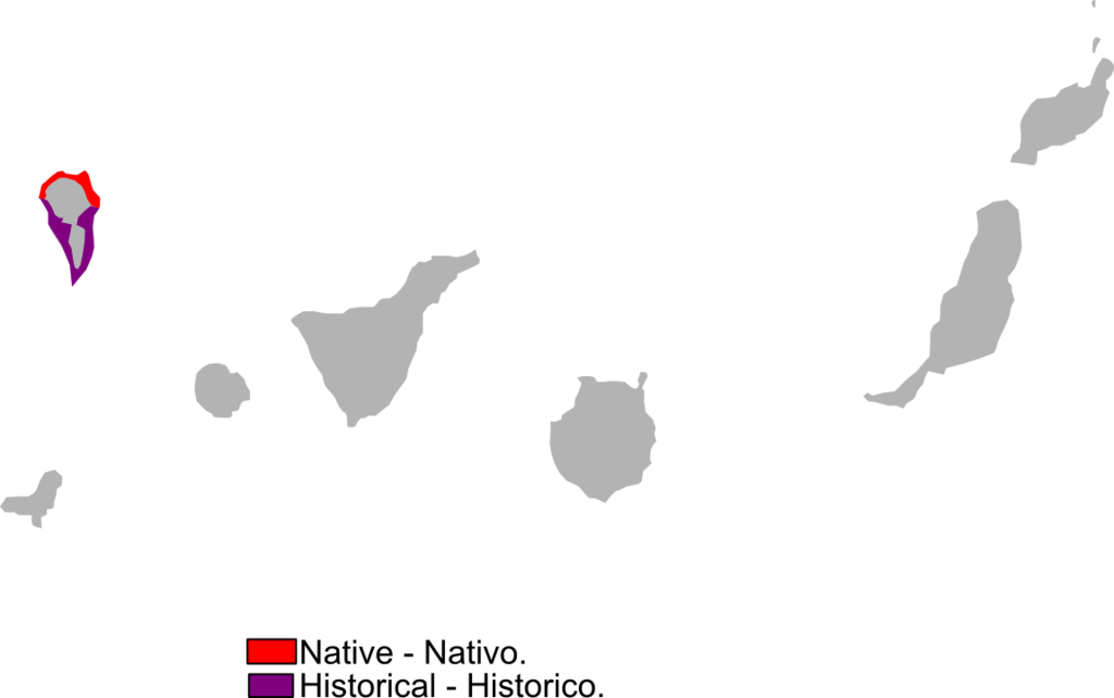 Gallotia auaritae range Map.png
