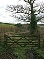 Gate at top of Winscombe Lane - geograph.org.uk - 1242664.jpg