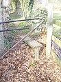 Gathering leaves - geograph.org.uk - 374961.jpg