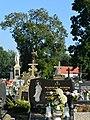 Gdow Cemetery 62.jpg