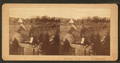 General view of National Cemetry, from Robert N. Dennis collection of stereoscopic views.png