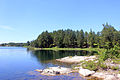 Gfp-minnesota-voyaguers-national-park-scenic-shoreline-of-cruiser-lake.jpg