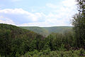 Gfp-pennsylvania-elk-scenic-trail-view-of-the-hills.jpg