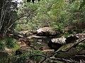 Gibberagong Trail - panoramio (7).jpg