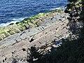 Gibbett Hill Formation photo.jpg