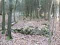 Gibet de Creuë, structure des fourches patibulaires.jpg