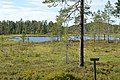 Gissjön, Dalarna, Sweden.jpg