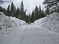 Glacier National Park May snow 4-16-14 (13901002651).jpg