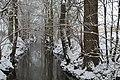 Glems in Winter (1).jpg