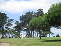 Golf du Phare Biarritz.jpg