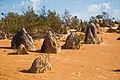 Gone Driveabout 3, The desert near Cervantes, Western Australia, 24 Oct. 2010 - Flickr - PhillipC.jpg