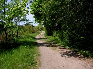 medieval road leading south from Stockholm