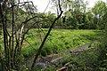 Graslandschaft an der Möhlin.jpg