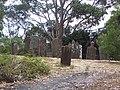 Gravestones Isle of Dead Tasmania Port Arthur.JPG