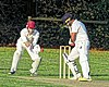Great Canfield CC v Hatfield Heath CC at Great Canfield, Essex, England 65.jpg