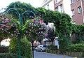 GreenCorridorEcologicalDesignLilleLMCU2010.JPG