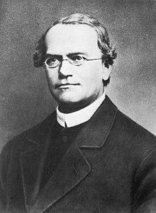 Gregor Mendel 2.jpg